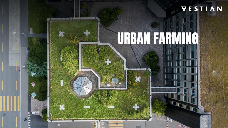 Urban Farming | Vestian