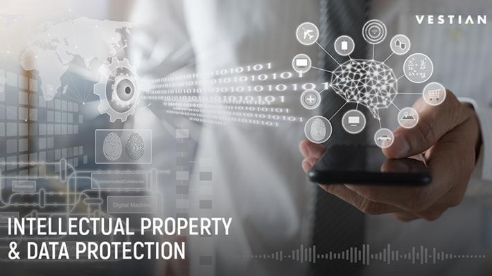 Intellectual Property & Data Protection | Vestian